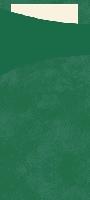 Púzdro na príbor tm.zelené s vanilkovou servítkou 8,5x19cm (500ks)