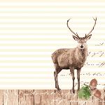 Luxusný obrúsok 40x40cm Dunilin Hunting (1ks) AKCIA