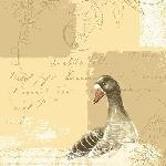 Luxusné obrúsky 40x40cm Duniliny Goose (50ks)