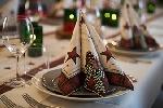 Luxusní ubrousky 40cm Naturally Christmas (50ks) AKCE