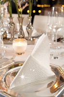 Luxusní ubrousky 40cm bílé s třpytkami (50ks)