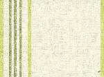 Prostírání papírové 30x40cm Raya kiwi (1000ks)