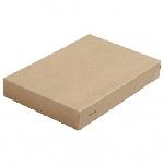Víčko na krabičku Viking Ecoecho, 200x140x30mm (300ks)