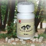 Lion`s Mane - houba Korálovec ježatý (120 tablet)