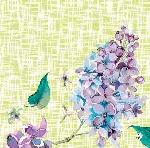 Hodvábne obrúsky Dunisoft 40x40cm Sweet Butterfly lime (12ks)